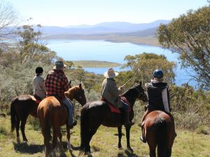 Reynella Homestead and Horseback Rides - St Kilda Accommodation