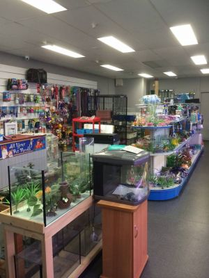 Nambour Pet Shop - St Kilda Accommodation