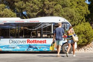 Rottnest Island Tour from Perth or Fremantle including Bus Tour - St Kilda Accommodation