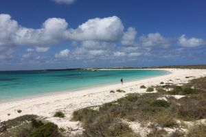 Abrolhos Island Half Day Fly and Flipper - St Kilda Accommodation