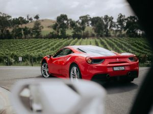 The Prancing Horse Supercar Drive Day Experience - Melbourne Yarra Valley - St Kilda Accommodation